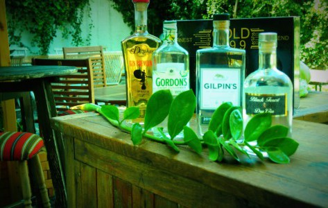 Tastings in der Ginbar